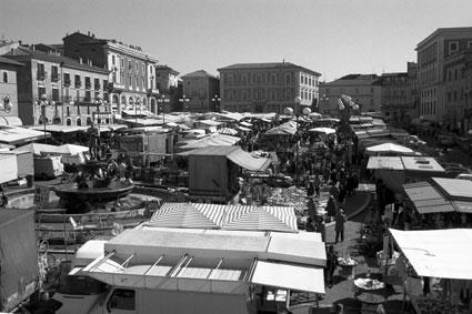 L'Aquila. Piazza del Duomo: mercato